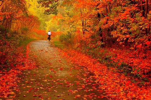 autumnride